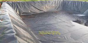 Màng chống thấm Hdpe làm bạt lót bể chứa nước