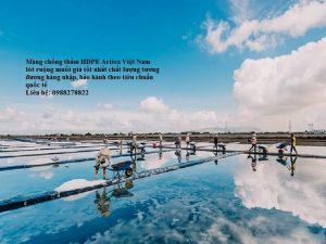 Màng chống thấm HDPE lót ruộng muối rẻ nhất Việt Nam